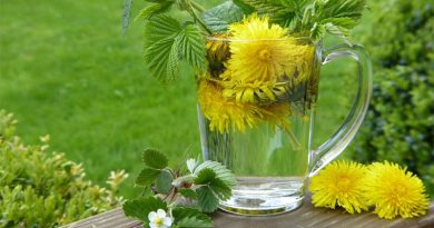 תרופות הרגעה ללא מרשם טבעיות